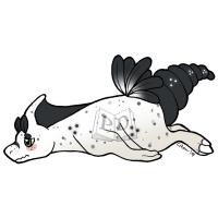 Thumbnail image for PARA-170-Sea-Bunny-Slug: Pepper