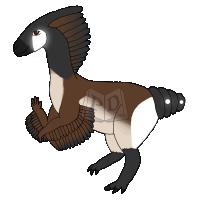 PARA-253-Canada-Goose: Gertrude