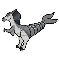 Thumbnail for PARA-386-Bottlenose-Dolphin: Echo
