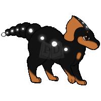 PARA-463-Rottweiler: Bear