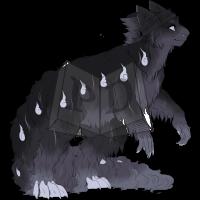 Thumbnail for PARA-491-Black-Dog