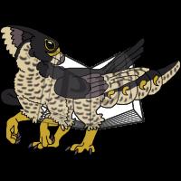 PARA-539-Peregrine-Falcon