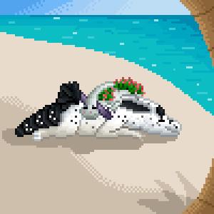 [Gift] Beach Nap